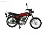 Информация по эксплуатации, максимальная скорость, расход топлива, фото и видео мотоциклов 125 MG Classic (2012)