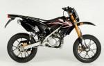 Информация по эксплуатации, максимальная скорость, расход топлива, фото и видео мотоциклов Ryz 50 Pro Racing Urban Bike (2007)