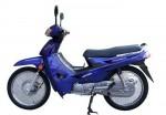 Информация по эксплуатации, максимальная скорость, расход топлива, фото и видео мотоциклов Evolution 110 (2009)