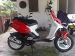 Информация по эксплуатации, максимальная скорость, расход топлива, фото и видео мотоциклов PMX 90 (2007)