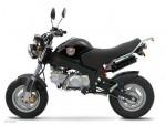 Информация по эксплуатации, максимальная скорость, расход топлива, фото и видео мотоциклов Mini Monster 125 (2012)