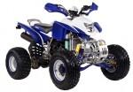 Мотоцикл ATV 250S: Эксплуатация, руководство, цены, стоимость и расход топлива